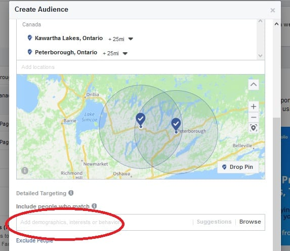 Setup Facebook Ad - Audience, Include people who match